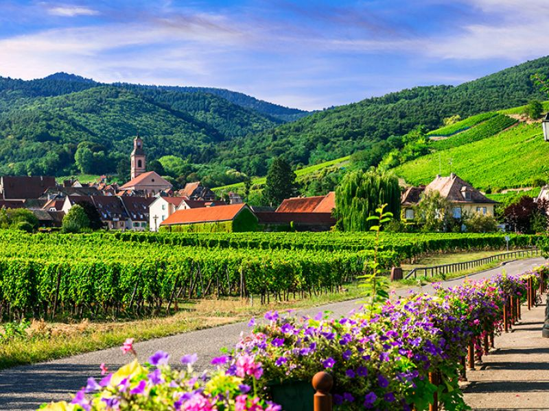Alsace Wine Road