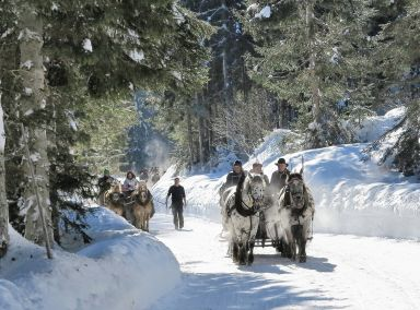 Enjoy a snow bound sleigh ride